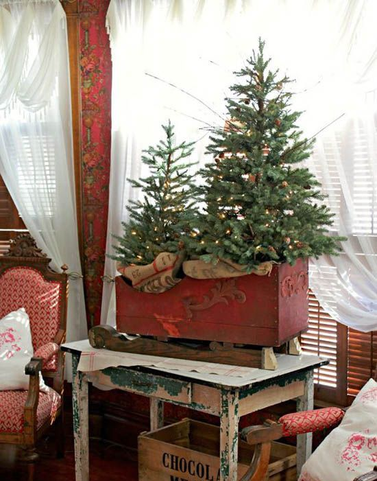 a tree duo placed in an antique sleigh