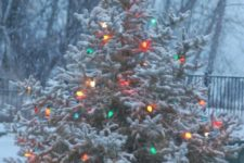 04 snowy real Christmas tree with vintage lights