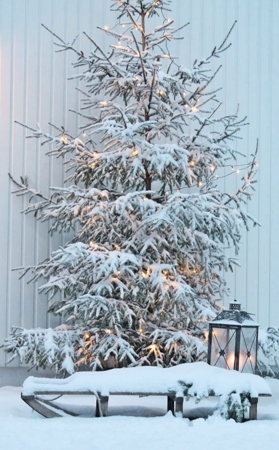 snowy tree with lights and a lantern next to it