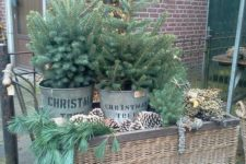 08 a wicker trolley display with oversized pinecones, evergreens and two trees in buckets