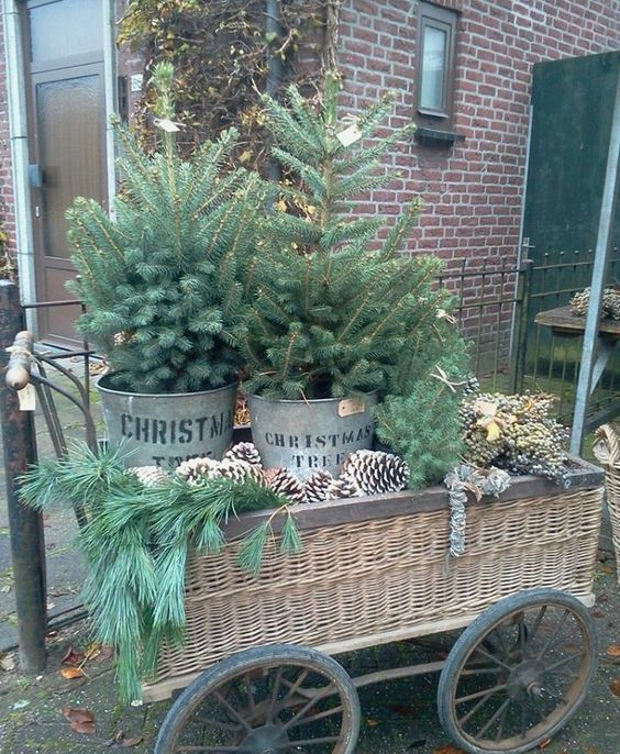 a wicker trolley display with oversized pinecones, evergreens and two trees in buckets