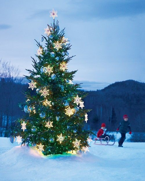 outdoor christmas tree with light snowflakes and oversized blue ornaments - Outdoor Christmas Trees
