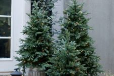 25 potted trees with lights make a big impact on front porch decor