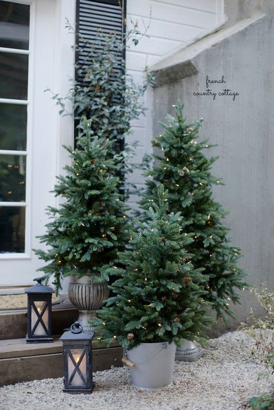 potted trees with lights make a big impact on front porch decor