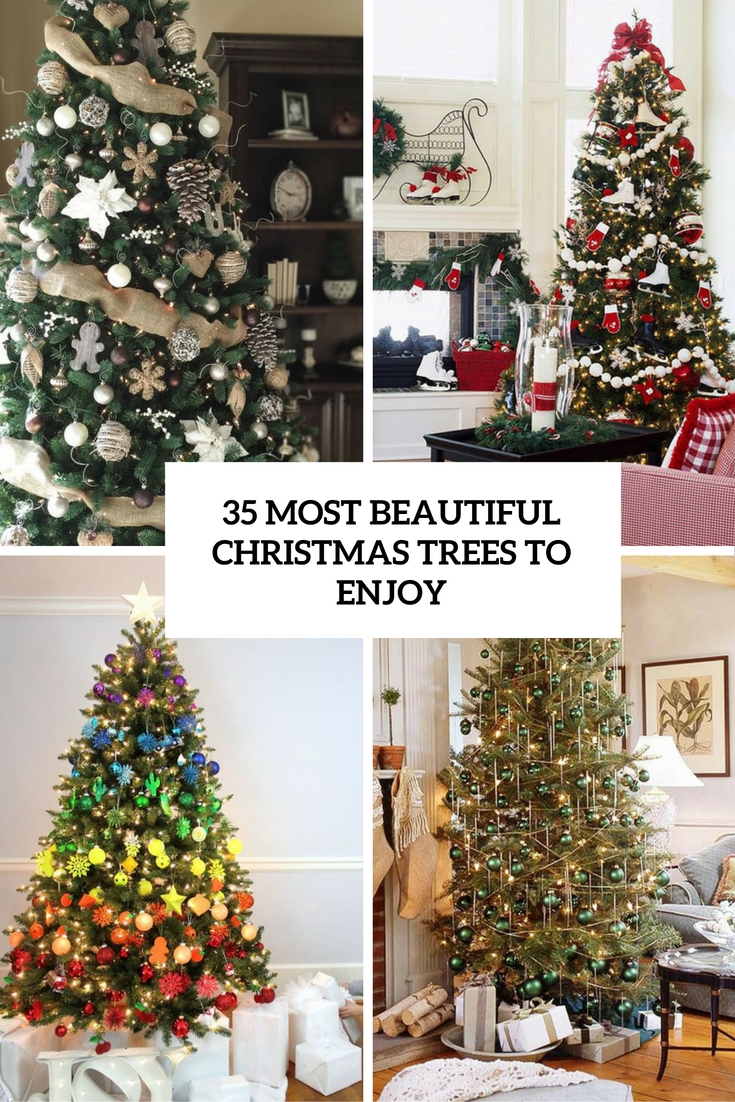 35 Most Beautiful Christmas Trees To Enjoy - DigsDigs