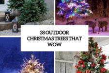 38 outdoor christmas trees that wow cover