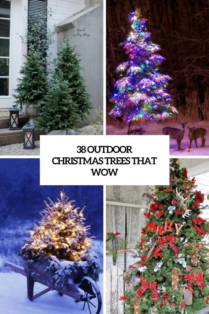 38 outdoor christmas trees that wow - Outdoor Christmas Trees
