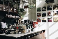 hanging greenery and living walls fit well modern coffee shops
