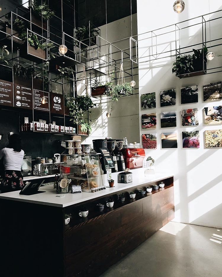 hanging greenery and living walls fit well modern coffee shops (via @nossafamiliacoffee)