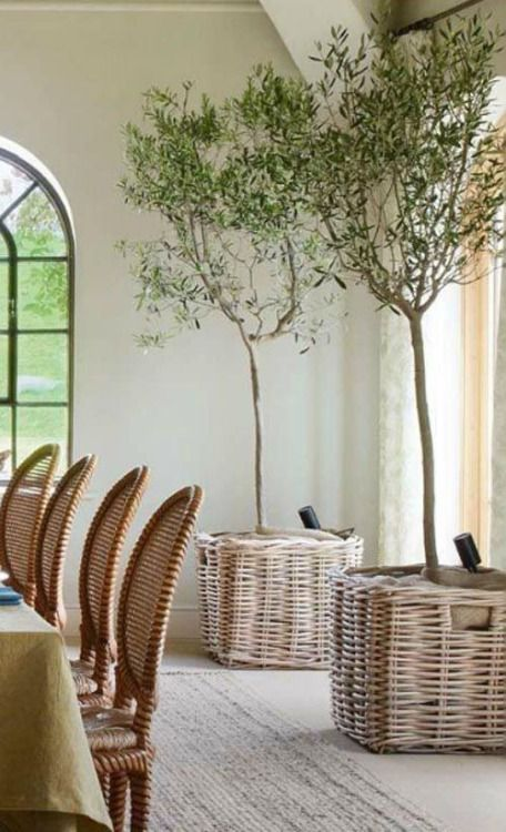 add a rustic touch to your dining space with trees in baskets