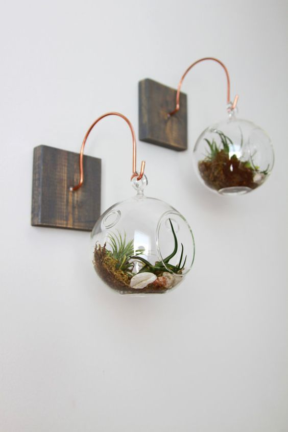 wood pieces with copper hangers, glass spheres with air plants