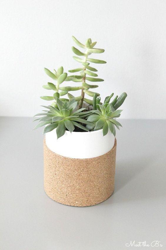 modern cork succulent planter