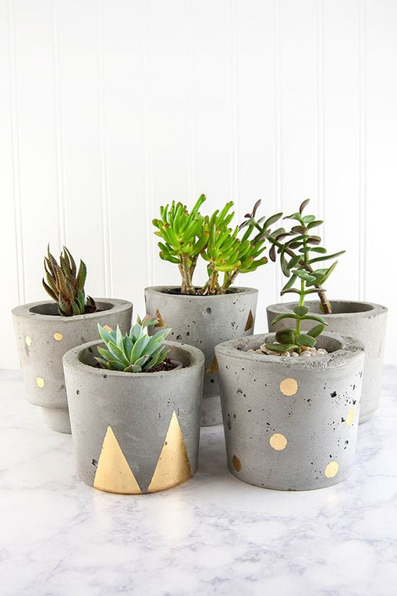 concrete planters for indoors and outdoors decorated with gold touches