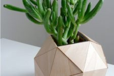 34 wooden geometric planter for a succulent