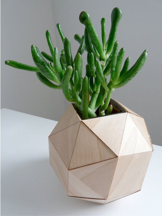 wooden geometric planter for a succulent