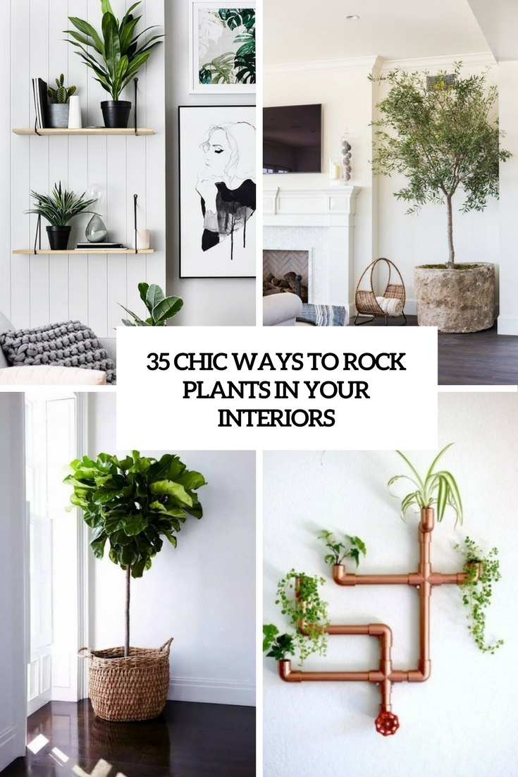 chic ways to rock plants in your interiors cover