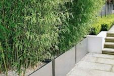 33 modern planters with some very thick greenery can work instead of a privacy fence
