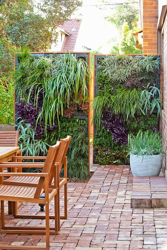 vertical living screens will not only give you privacy but also an amazing look to your backyard