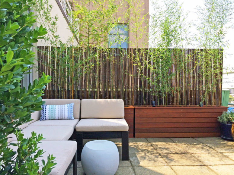 Bamboo roll fencing works great in combination with real bamboo in wooden planters. (Amber Freda Garden Design)