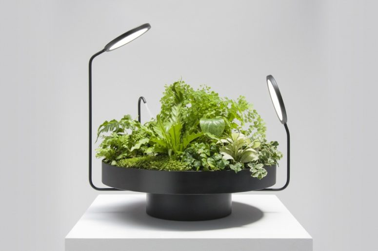 Viride Dos is a more traditional planter with lighting disks and a mister