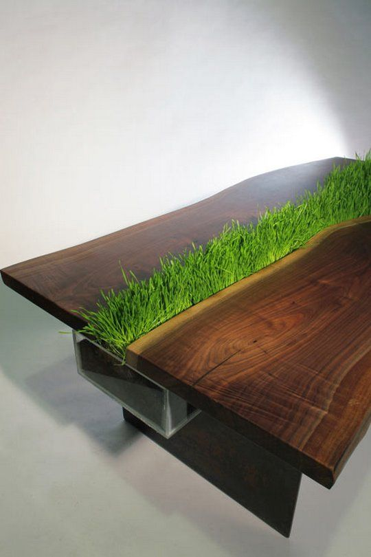 a dark stained wooden table with grass growing right in the center