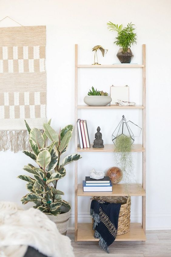 a shelving unit with greenery on each shelf looks fresh and modern