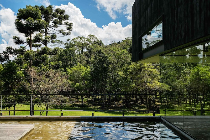 The site is in a glade, surrounded by forests and lush, green vegetation