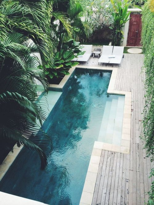 a small decked backyard with tropical plants and a narrow pool for refreshing