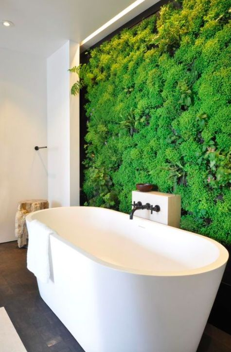 an indoor plant wall can become a focal point in your bathroom and make you feel taking a bath outside
