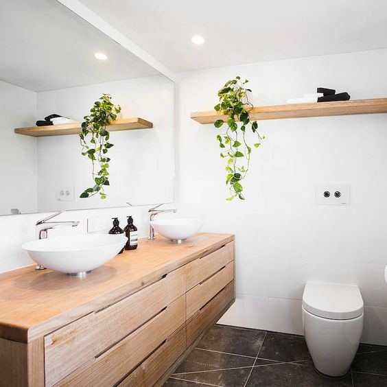 a climbing plant adds a natural feel to a laconic modern bathroom