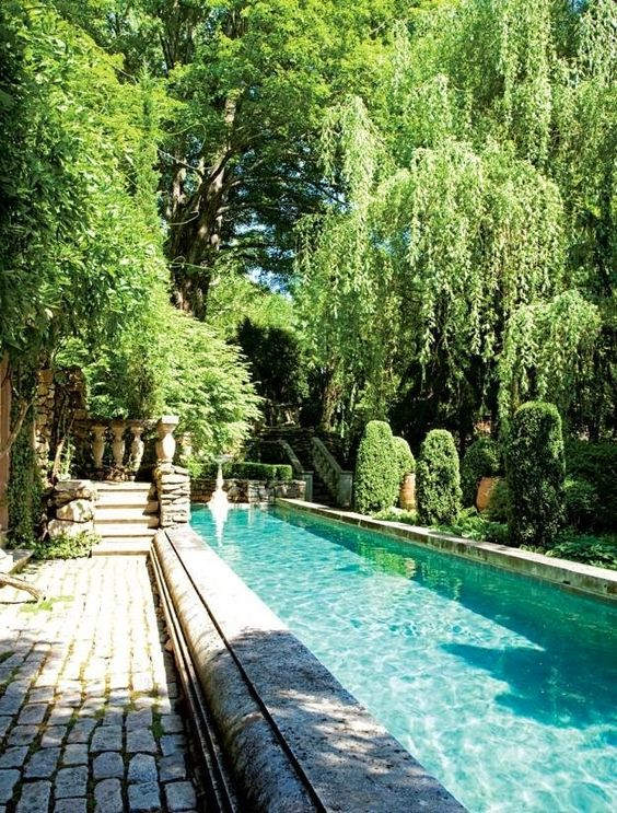 refined stone clad pool surrounded with greenery and with stone pavers