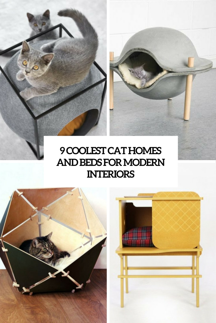 9 coolest cat beds and homes for modern interiors cover