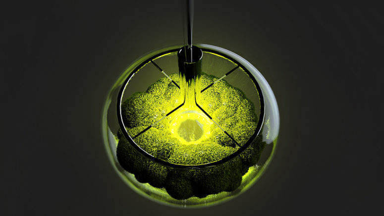 It can be used as a surface top lamp or just an installation in your home