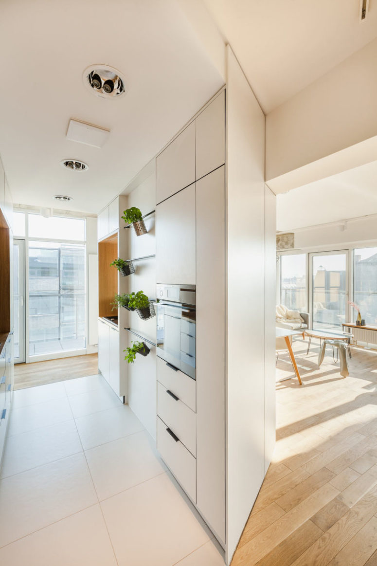 The kitchen is a small space with greenery in pots and sleek cabinets with small handles