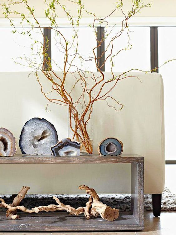 agate slices on display on a wooden shelf with a driftwood piece