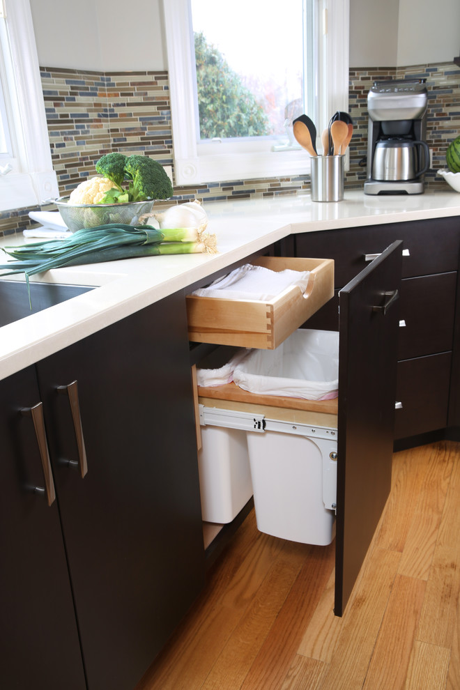 a cool idea of trash can storage and an additional drawer for garbage base (Normandy Remodeling)