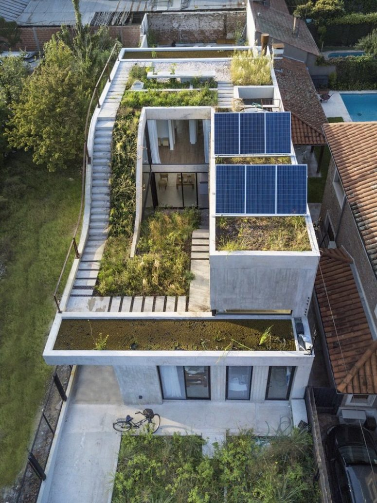 This unique house is built around a vertical garden and is very sustainable, with solar panels and rainwater usage