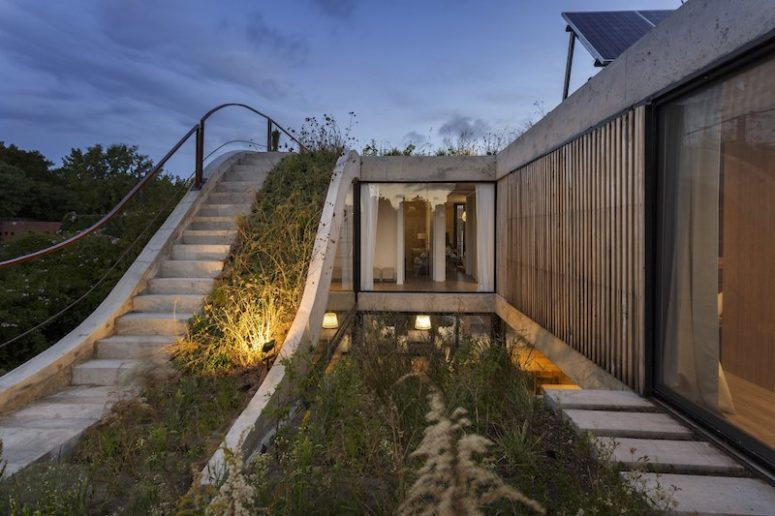 The roof of the house is covered with greenery, plants seem to take over the architecture, and the plants are local