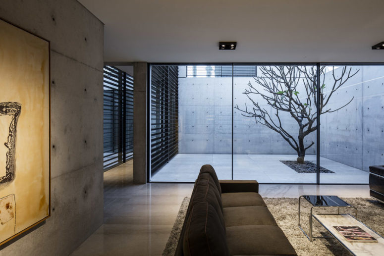 There's a private courtyard clad with concrete and with a single tree growing