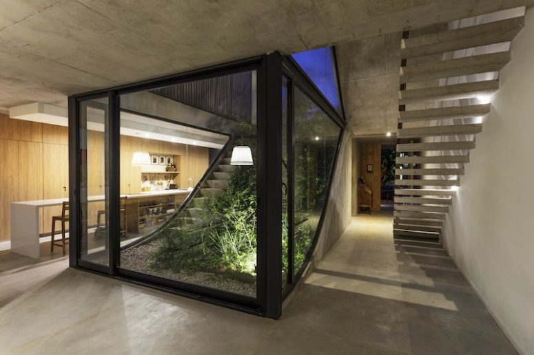 Vegetation grows alongside the concrete staircase which connects all the floors of the house