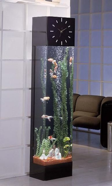 a modern grandfather's clock and aquarium in one will make a statement in your interior