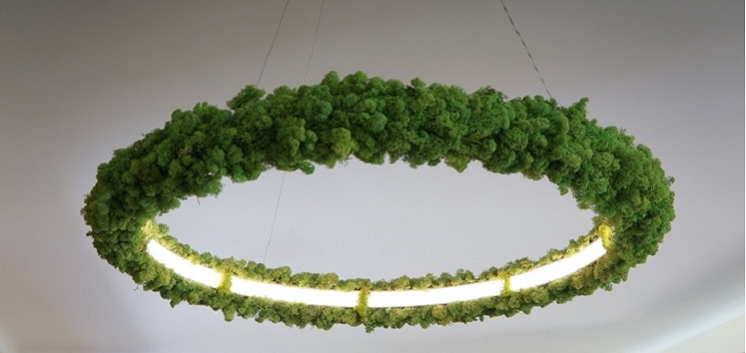 This unique luminaire is 100% eco friendly because it's covered with Icelandic moss, which is living and fresh   what a stunning look