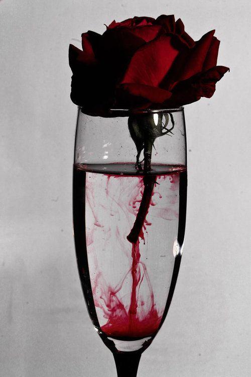 26 Cool Vampire Halloween Party Decor Ideas Digsdigs