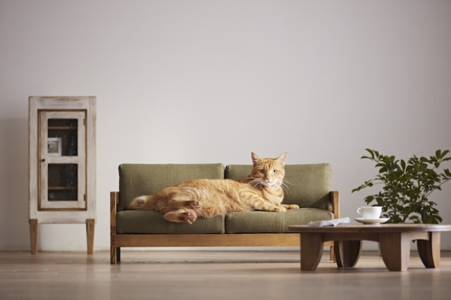There are sofas and beds for kitties, made of natural wood and with natural fabric upholstery