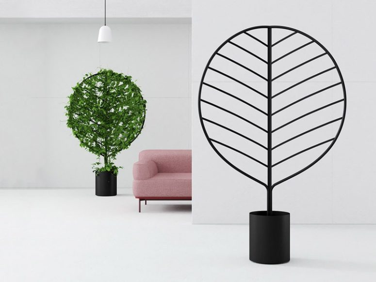 Botanical screens are unique items that can serve as pots, decor, space dividers and much more