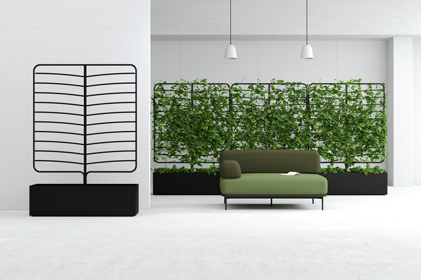 The screens can be used to create a wall of greenery within an interior