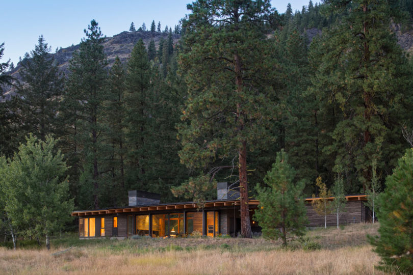 Here's how the home looks from outside, standing in the pines and merging with the forest in a beautiful way