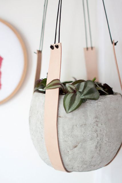 concrete planters hanging on leather straps are ideal for an industrial or minimalist interior