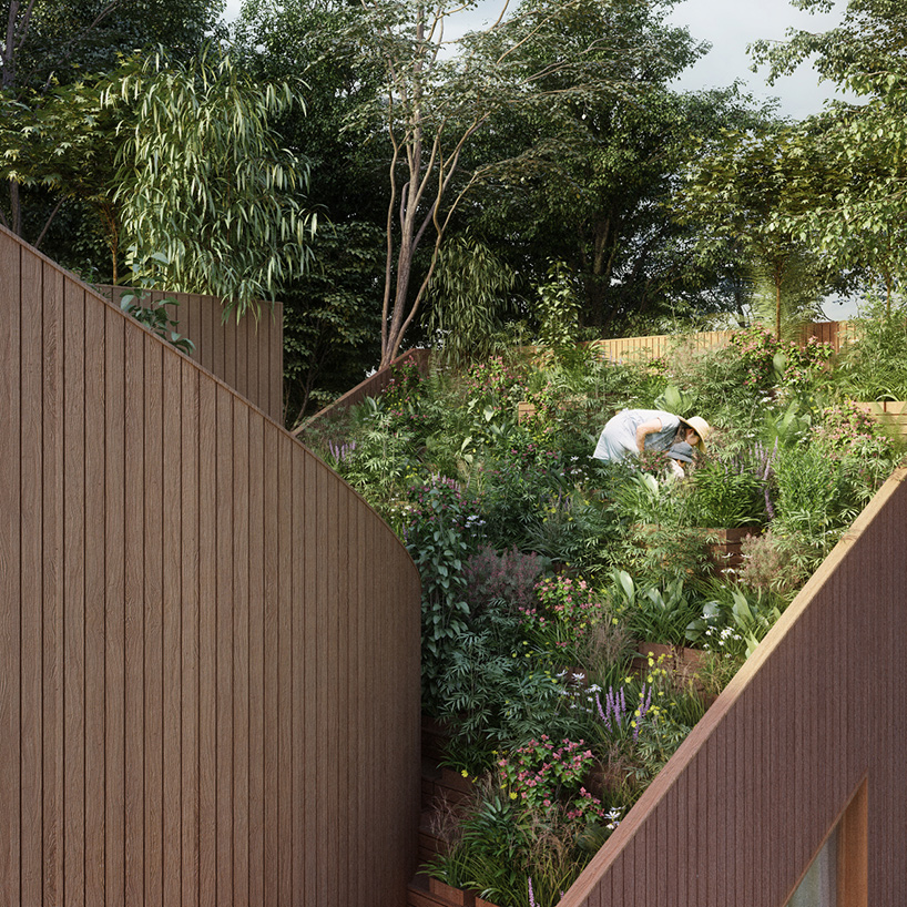 Two roofs surround the garden, channeling rainwater to the ground