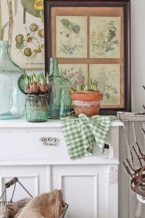 vintage botanical posters and spring bulbs in pots and glasses for a non-typical spring mantel